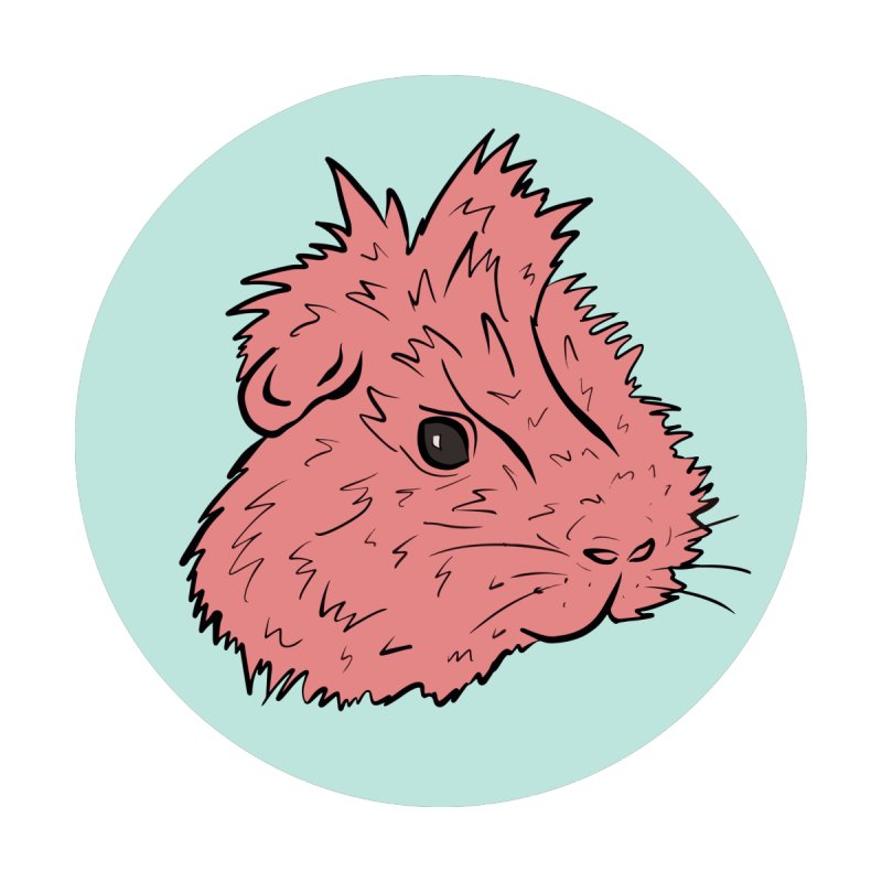 Guinea Pig Pop!  by Shelly Still's Artist Shop