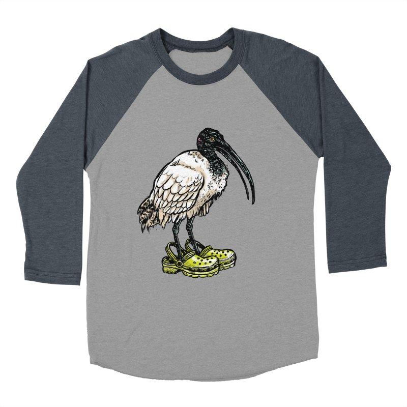Ibis Women's Baseball Triblend T-Shirt by Simon Christopher Greiner