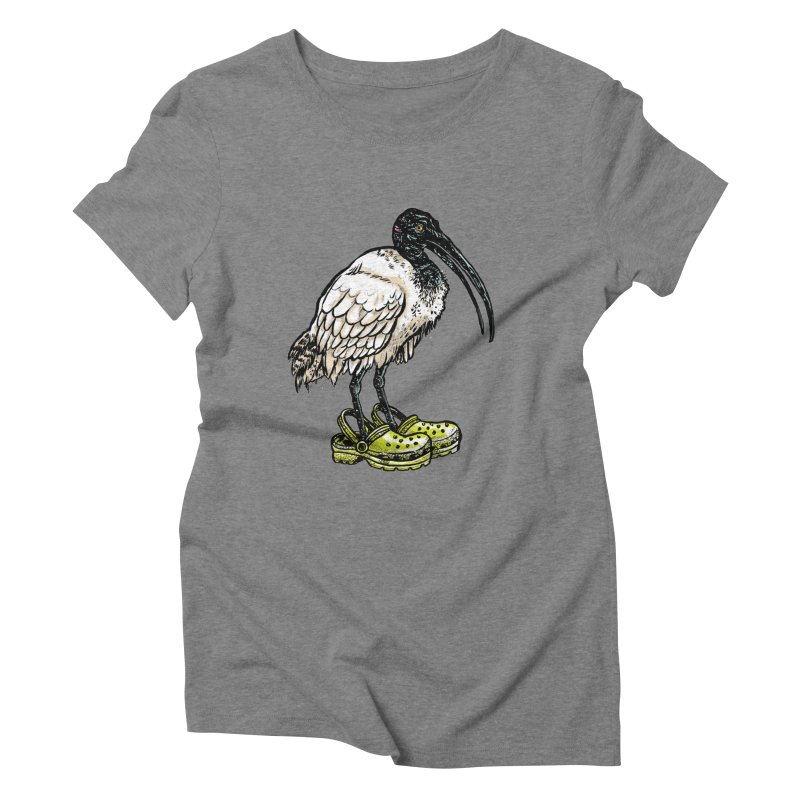 Ibis Women's Triblend T-Shirt by Simon Christopher Greiner