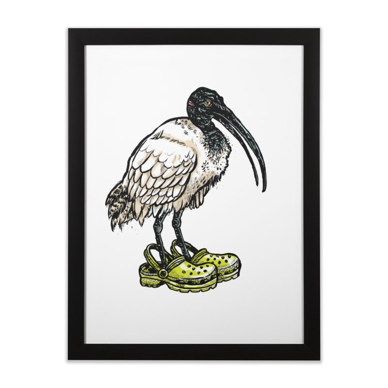 Ibis Home Framed Fine Art Print by Simon Christopher Greiner
