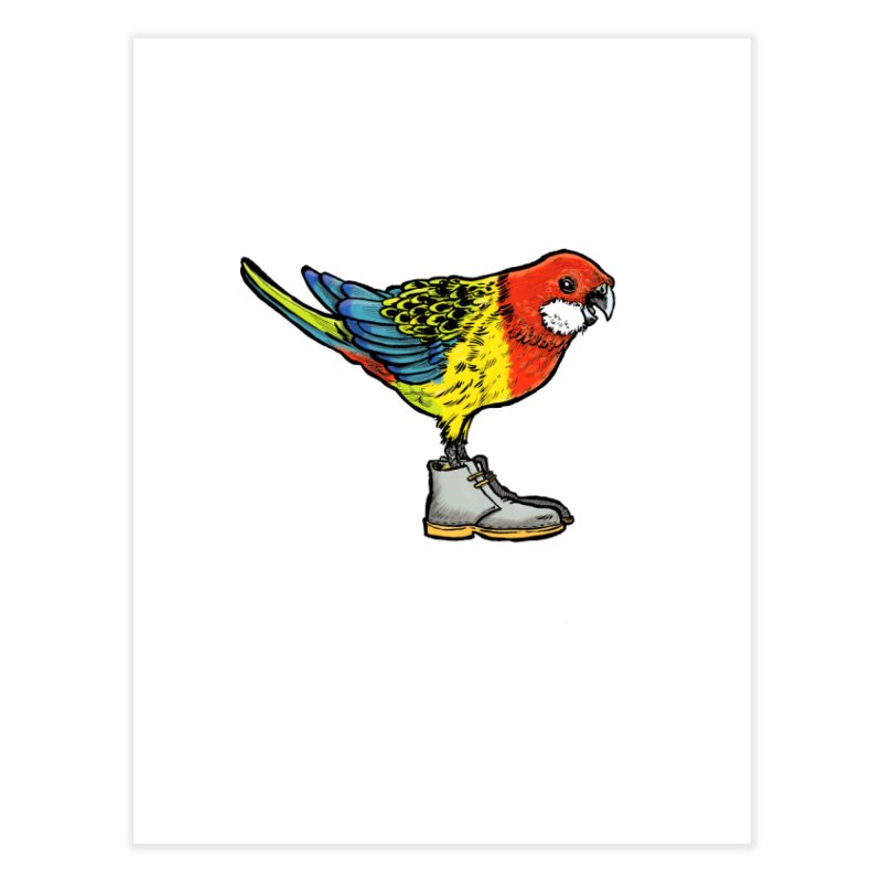 Rosella Home Fine Art Print by Simon Christopher Greiner