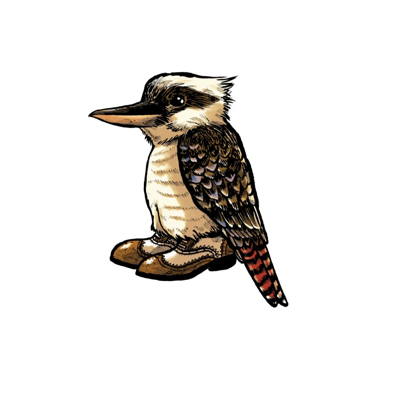 Kookaburra Men's T-Shirt by Simon Christopher Greiner
