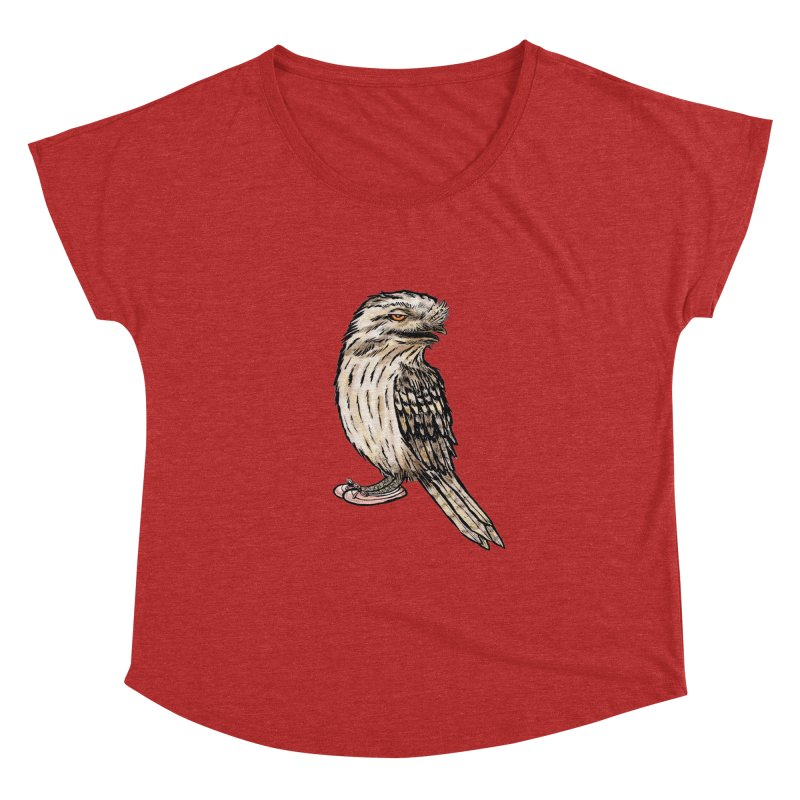 Tawny Frogmouth Women's Dolman Scoop Neck by Simon Christopher Greiner