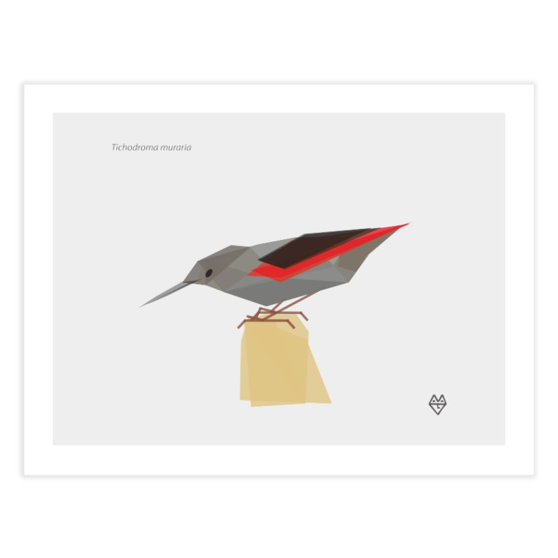 Wallcreeper Home Fine Art Print by Sin Remite Artist Shop