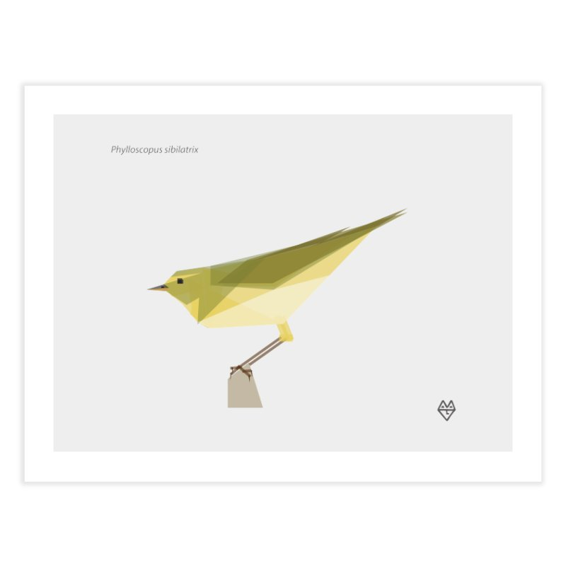 Wood Warbler Home Fine Art Print by Sin Remite Artist Shop