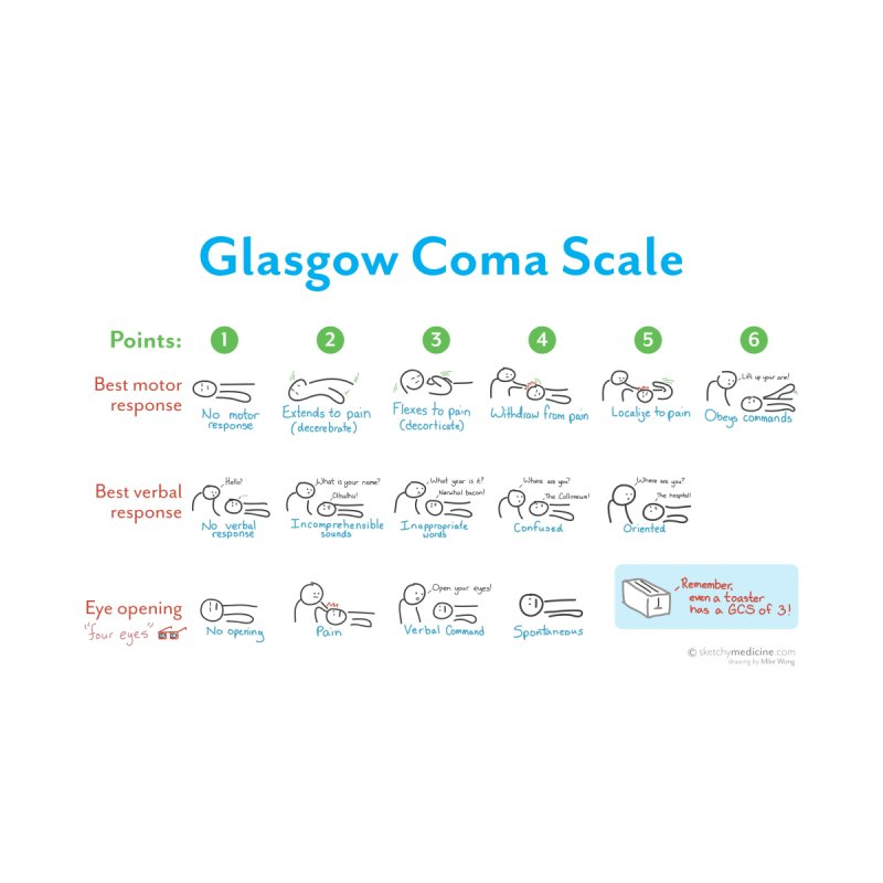 Glasgow Coma Scale (GCS) Print by Sketchy Medicine Shop