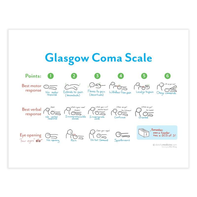 Glasgow Coma Scale (GCS) Print Home Fine Art Print by Sketchy Medicine Shop