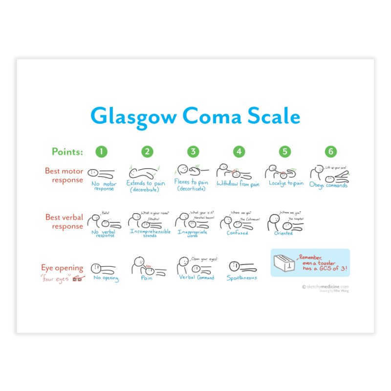 Glasgow Coma Scale (GCS) Print Home Fine Art Print by Sketchy Medicine Shop