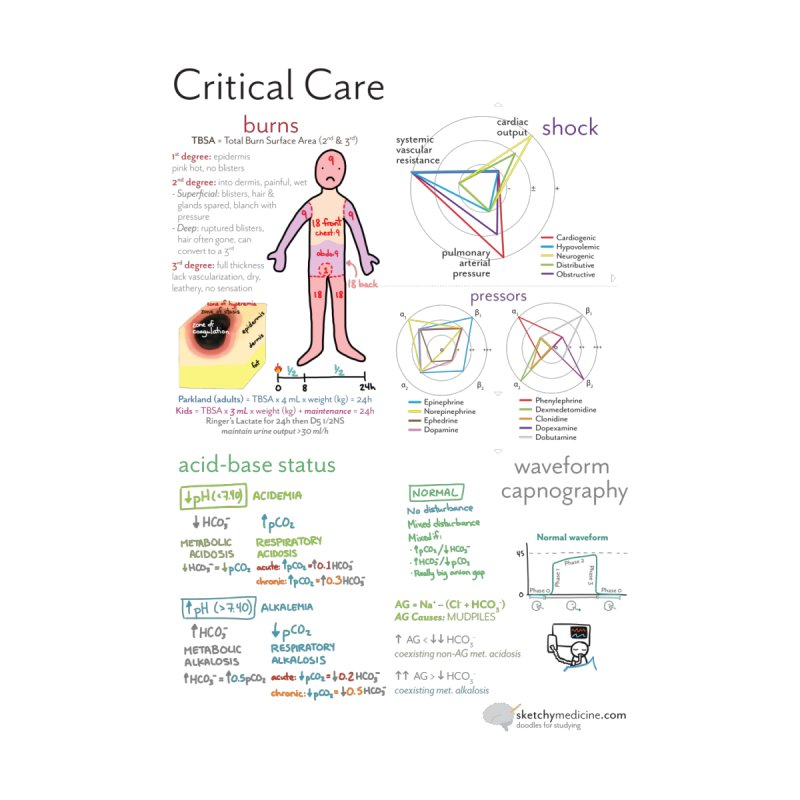 Critical Care Sketchbook by Sketchy Medicine Shop