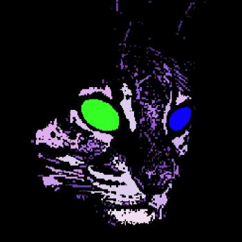 skoddie_merch Logo