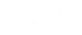 Skylyne Music Group Store Logo
