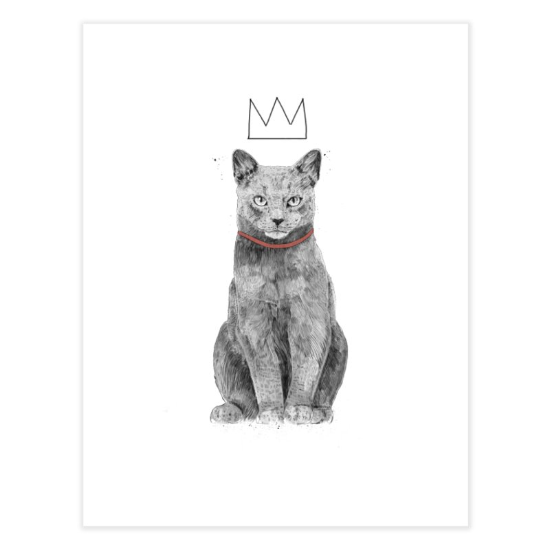 King of everything Home Fine Art Print by Balazs Solti