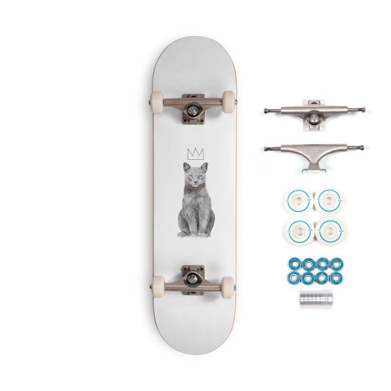 King of everything Accessories Complete - Basic Skateboard by Balazs Solti