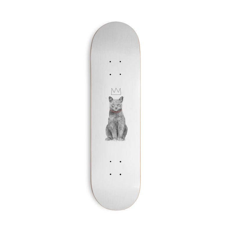 King of everything Accessories Deck Only Skateboard by Balazs Solti