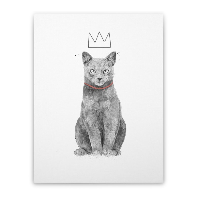 King of everything Home Stretched Canvas by Balazs Solti