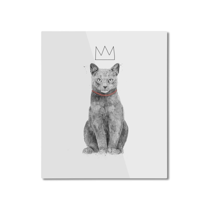 King of everything Home Mounted Aluminum Print by Balazs Solti