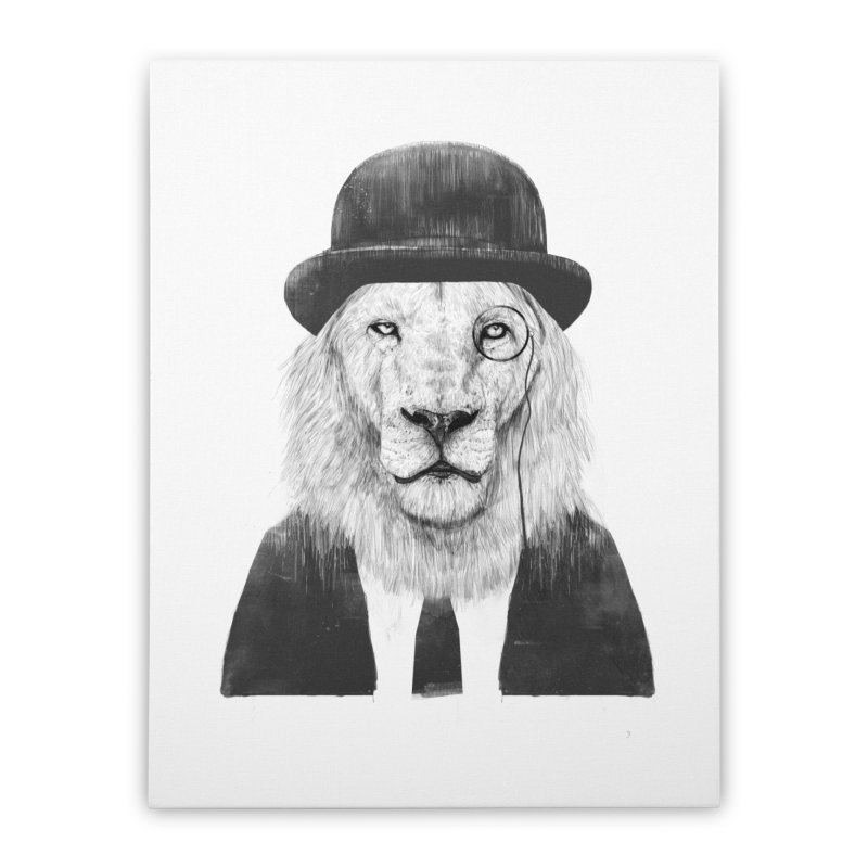 Sir lion Home Stretched Canvas by Balazs Solti