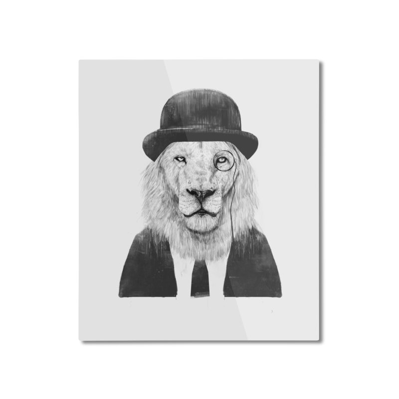 Sir lion Home Mounted Aluminum Print by Balazs Solti
