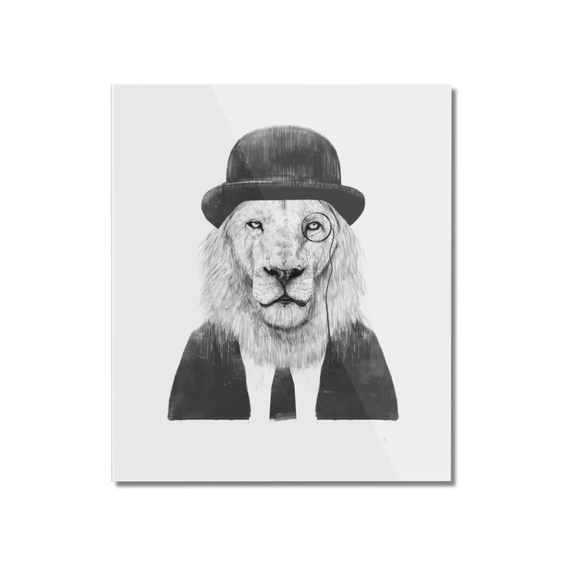 Sir lion Home Mounted Acrylic Print by Balazs Solti