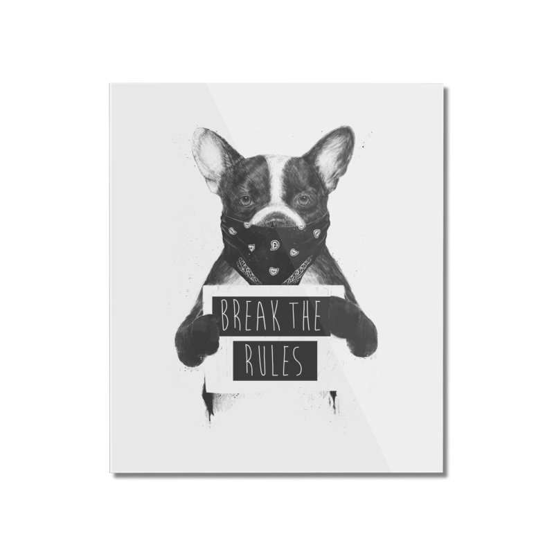Rebel dog Home Mounted Acrylic Print by Balazs Solti