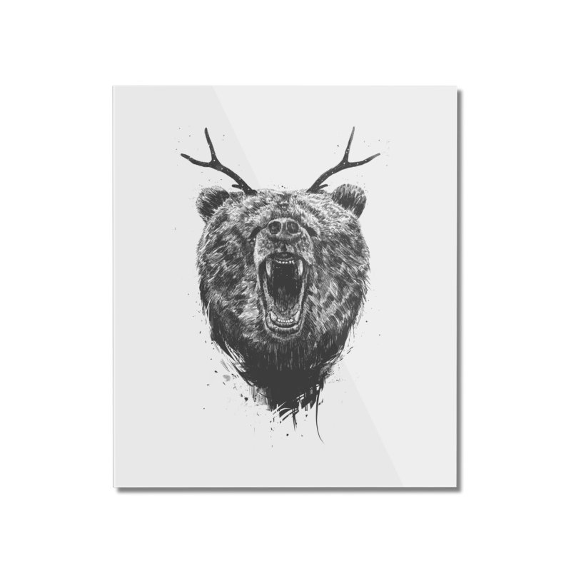 Angry bear with antlers Home Mounted Acrylic Print by Balazs Solti