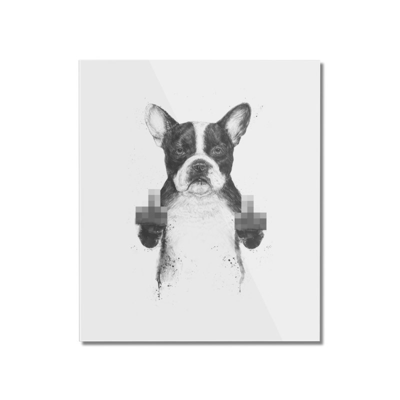 Censored dog Home Mounted Acrylic Print by Balazs Solti