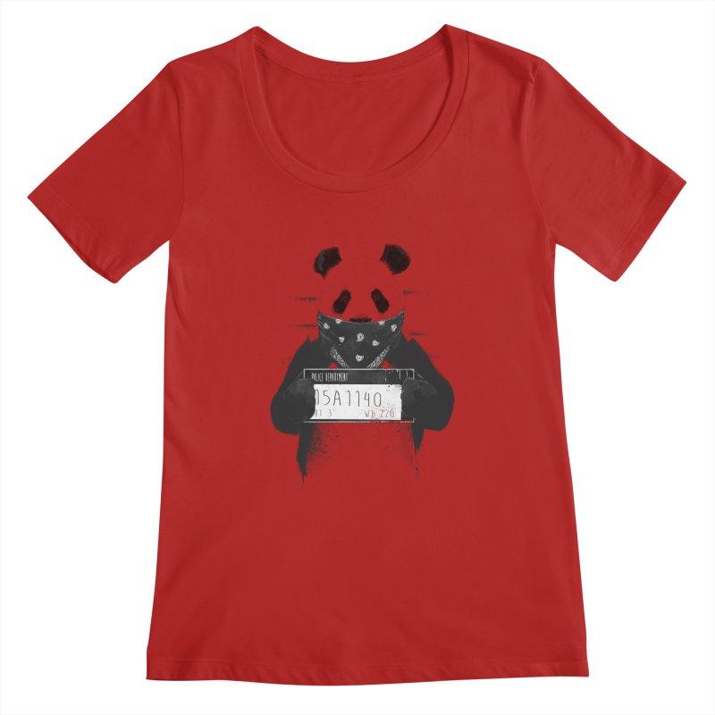 Bad Panda Women's Scoopneck by Balazs Solti
