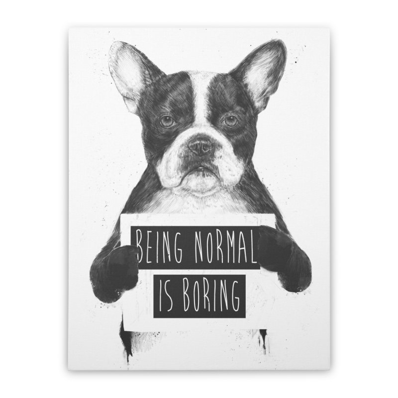 Being Normal is Boring Home Stretched Canvas by Balazs Solti
