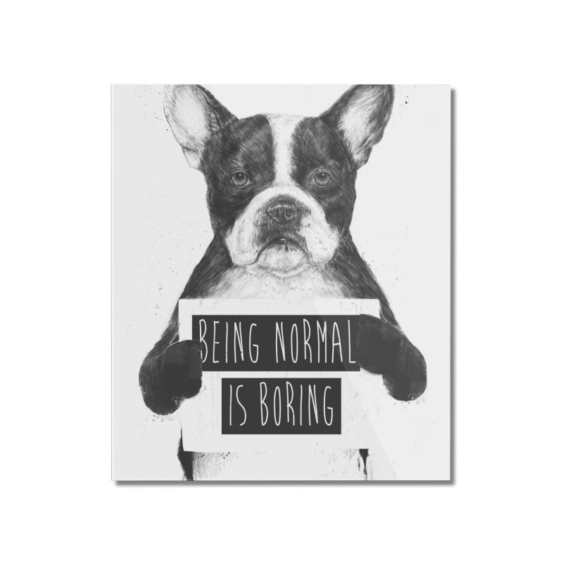 Being Normal is Boring Home Mounted Acrylic Print by Balazs Solti