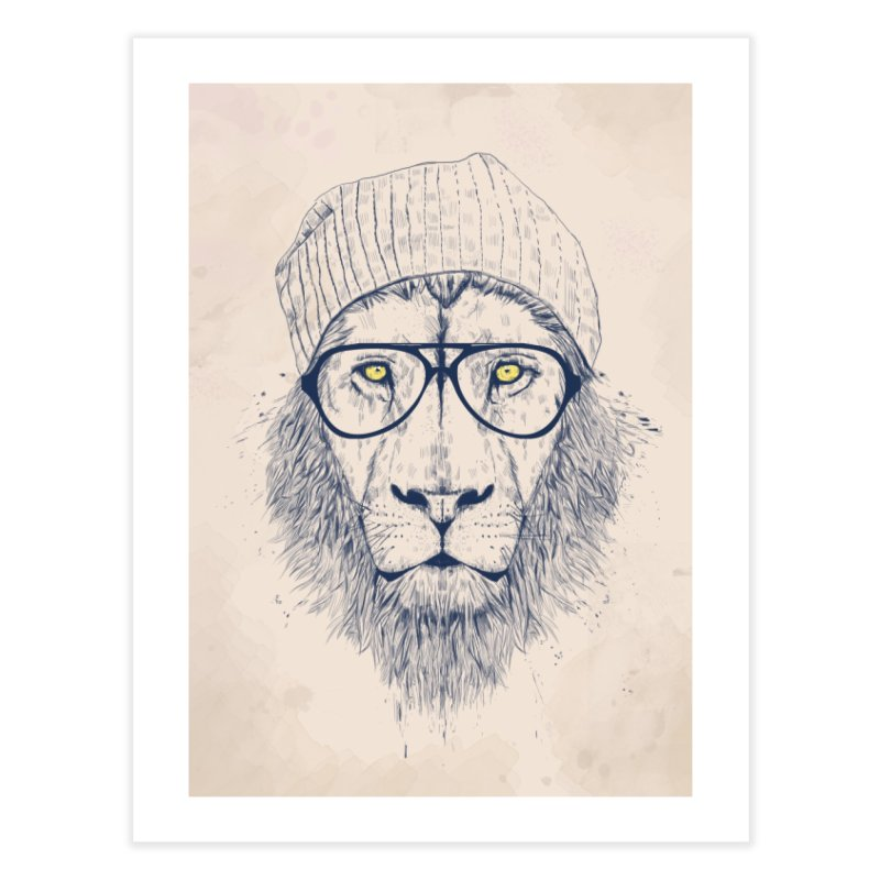 Cool Lion Home Fine Art Print by Balazs Solti
