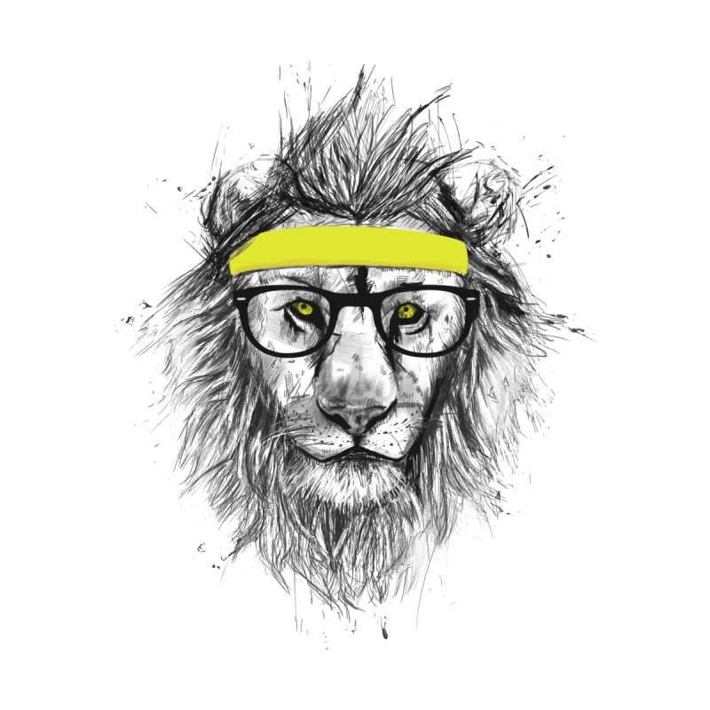 Hipster Lion None  by Balazs Solti