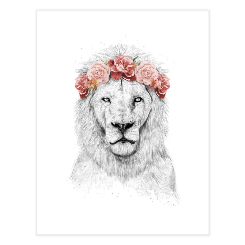 Festival lion Home Fine Art Print by Balazs Solti