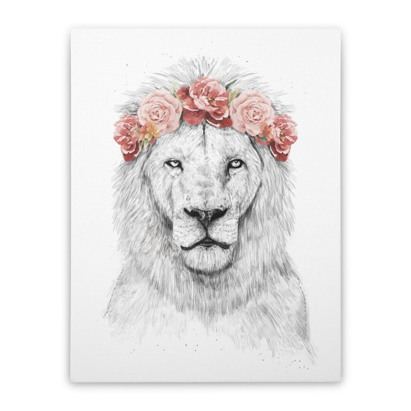 Festival lion Home Stretched Canvas by Balazs Solti