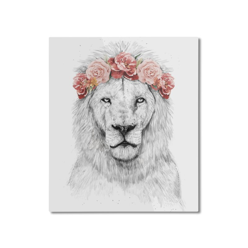 Festival lion Home Mounted Aluminum Print by Balazs Solti