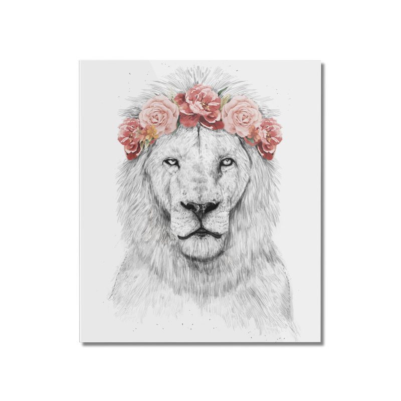Festival lion Home Mounted Acrylic Print by Balazs Solti