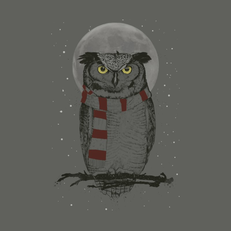 Winter owl by Balazs Solti