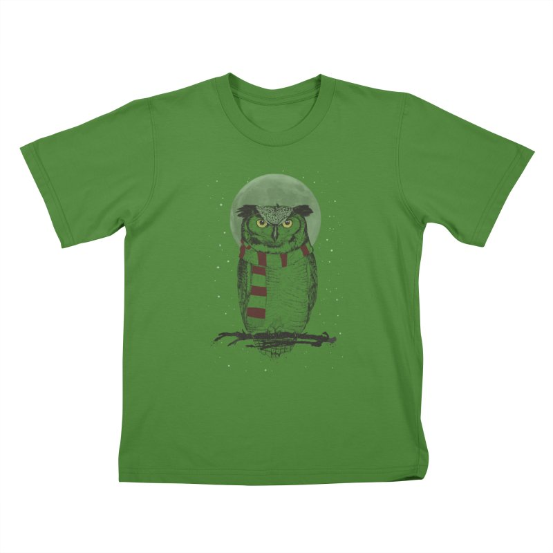 Winter owl Kids T-Shirt by Balazs Solti