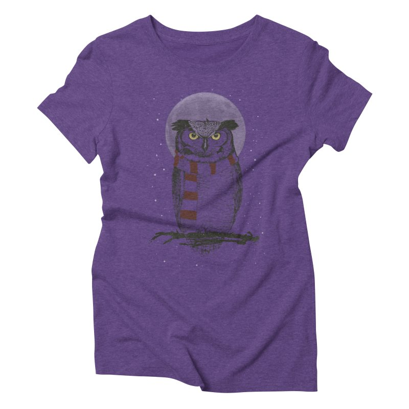 Winter owl Women's Triblend T-Shirt by Balazs Solti