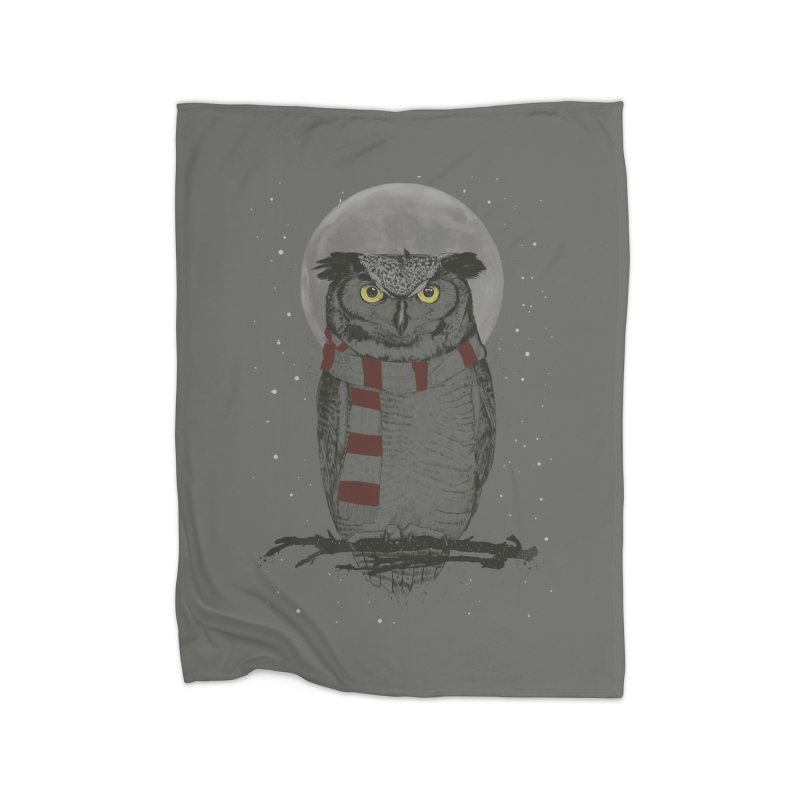 Winter owl Home  by Balazs Solti