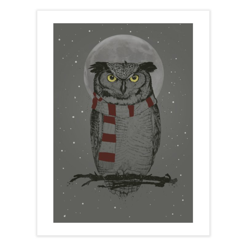 Winter owl Home Fine Art Print by Balazs Solti
