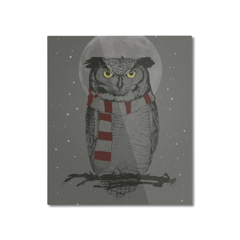 Winter owl Home Mounted Aluminum Print by Balazs Solti