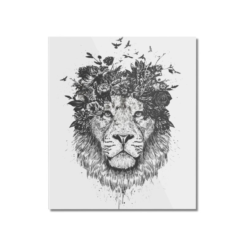 Floral lion (bw) Home Mounted Acrylic Print by Balazs Solti