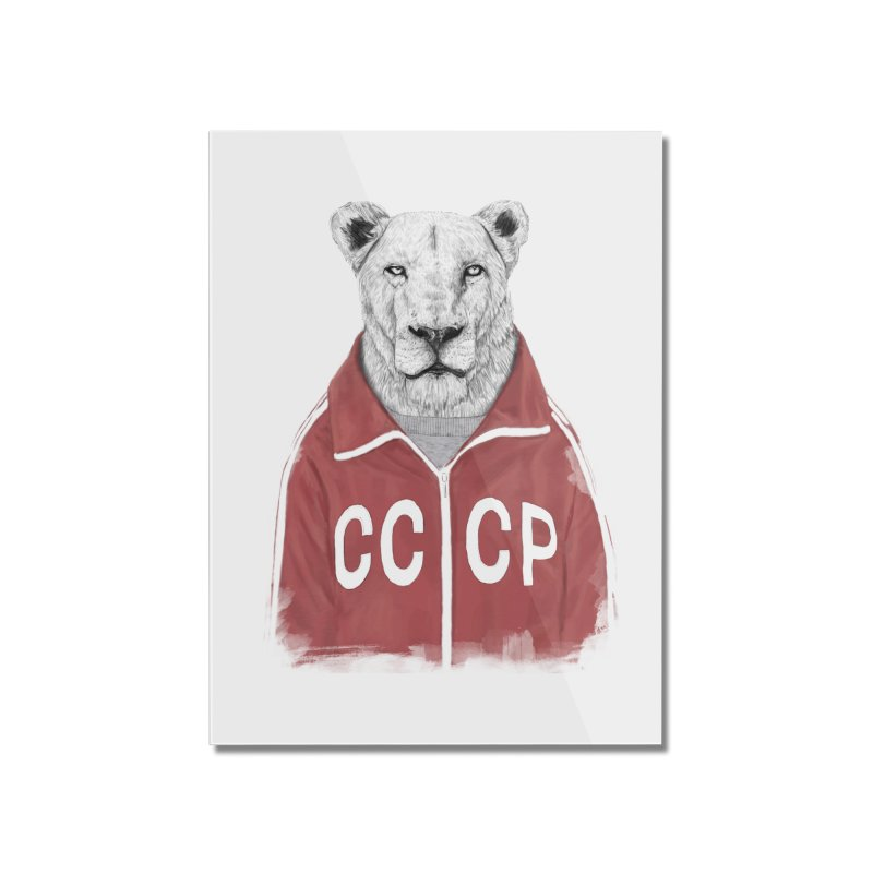 Soviet lion Home Mounted Acrylic Print by Balazs Solti