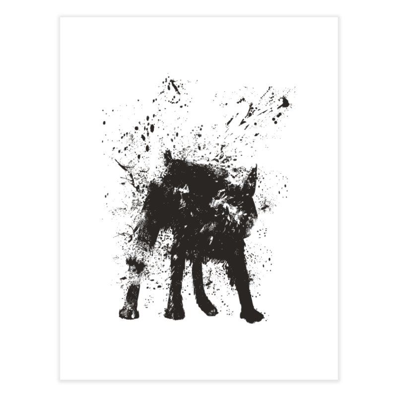 Wet dog Home Fine Art Print by Balazs Solti