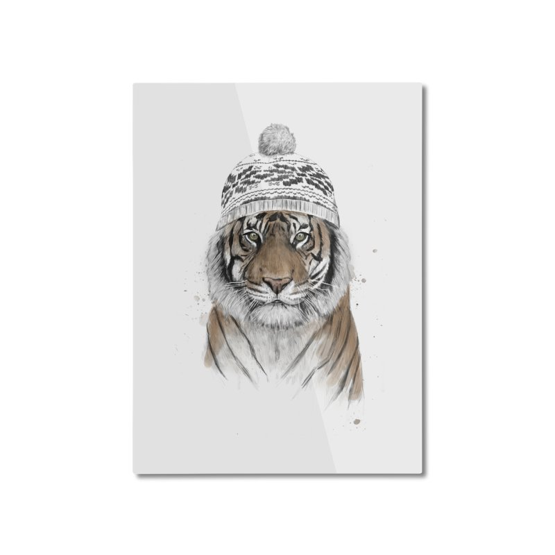 Siberian tiger Home Mounted Aluminum Print by Balazs Solti