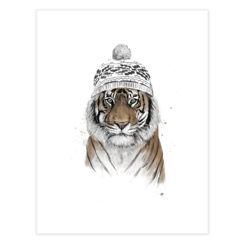 Siberian tiger Home Fine Art Print by Balazs Solti