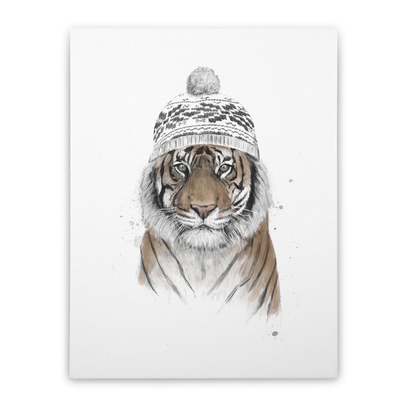 Siberian tiger Home Stretched Canvas by Balazs Solti