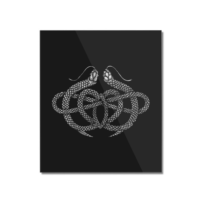 snake me knot Home Mounted Acrylic Print by Sp3ktr's Artist Shop