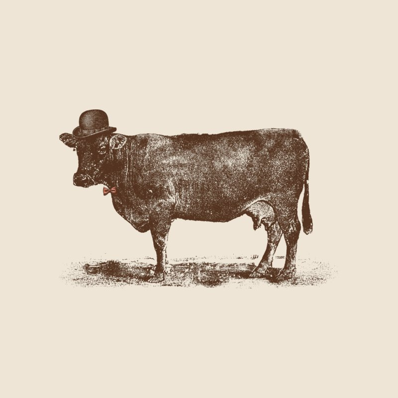 Cow Cow Nut Home Fine Art Print by Speakerine / Florent Bodart