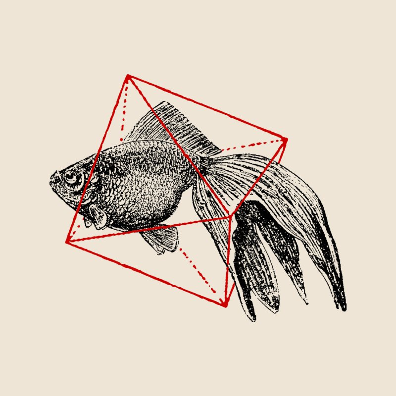Fish in Geometrics by Speakerine / Florent Bodart